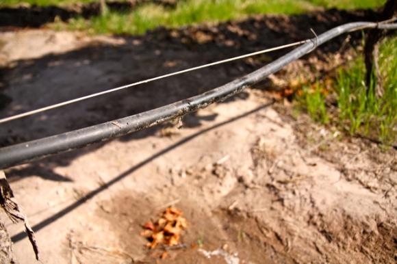 Drip Irrigation, Altos Las Hormigas, Harvest 2012, Mendoza