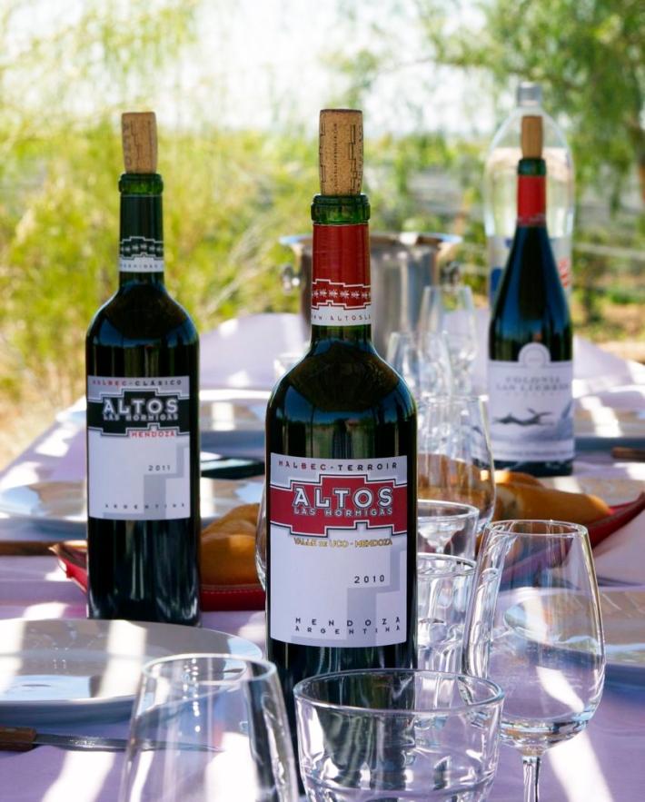 Altos Las Hormigas Wines. Harvest 2012. Mendoza, Argentina.