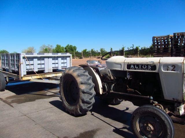 Bodega Altos Las Hormigas Harvest 2012. Mendoza, Argentina. Malbec.
