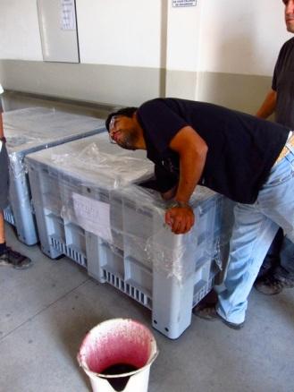Agronomist Mauricio Gonzalez testing the micro-vinification of Altos Las Hormigas Single Vineyard Malbec, Makia, Vista Flores, Uco Valley