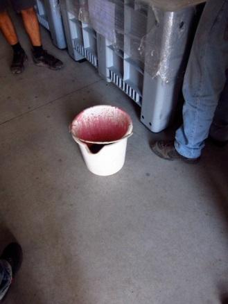 Micro-vinification of Altos Las Hormigas Single Vineyard Malbec, Ana Blanco Vineyard, Altamira, Uco Valley