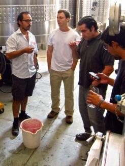 """Individual 225L """"fermentation"""" bins. Micro-vinification of Altos Las Hormigas Single Vineyard Malbec, Uco Valley"""