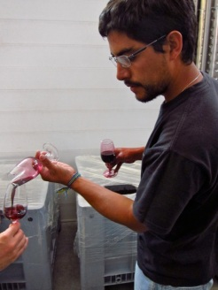 Mauricio Gonzalez testing the micro-vinification of Altos Las Hormigas Single Vineyard Malbec, Makia Vineyard, Vista Flores.