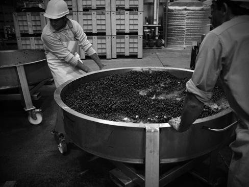 Altos Las Hormigas Harvest 2012, Mendoza, Argentina. Malbec.