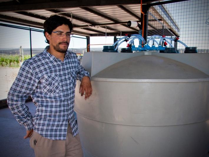 Mauricio Gonzalez, Compost Tea, Biodynamic Vineyard Altos Las Hormigas Malbec, Mendoza, Argentina