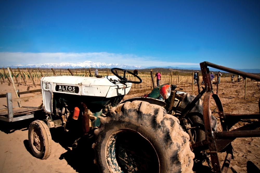 Tractor, Planting a Biodynamic Malbec Vineyard, Mendoza, Argentina, Altos Las Hormigas