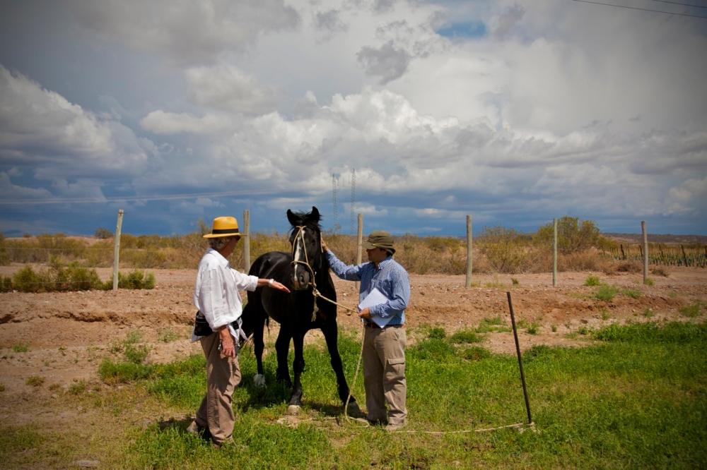 Ramiro Guiroy, Agronomist, Bodega Altos Las Hormigas, Mendoza, Argentina, Malbec Vineyards